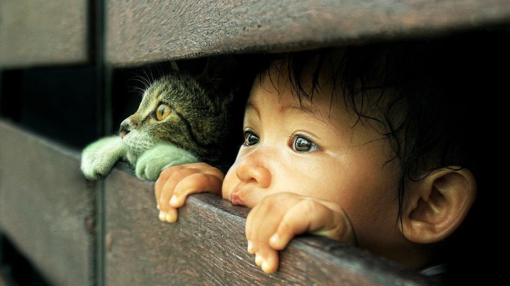 people___children_curious_cat_and_baby_095639_